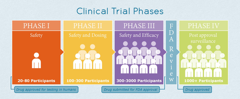 clinicaltrialphases_slide.jpg