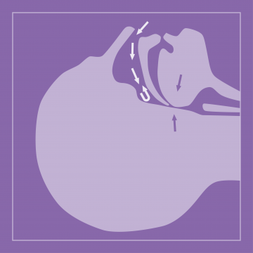 news_thumbnails_sleep_apnea.png